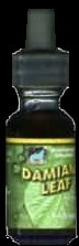 Damiana Liquid Extract